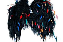 Feathered Fashions / by Wendy Brandes