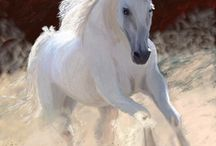 Horses / Real/fantasy / by Charlene Feeback