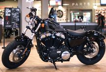 2015 H-D Models / According to the Chinese Zodiac Calendar, 2015 is the year of the sheep. We say 2015 is the year of Harley-Davidson.  / by Hal's Harley-Davidson