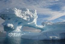 icebergs / by Dana Phillips