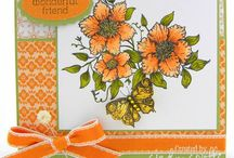 Orange / by Splitcoaststampers