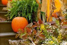 Autumn / by Poppy Hill Designs