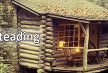 Homesteading / by Adam Deml
