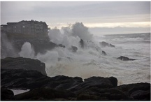 Stormy Seas / by Laura Elshire