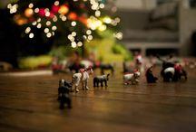 Merry Christmas / by Natalie Bray