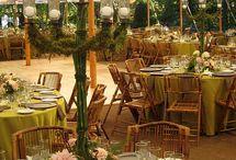 Wedding / by Amy Gehner