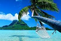 Dream vacation  / by Alyssa Poore
