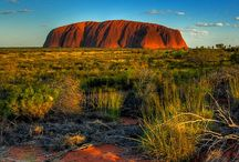 Living in the Lands Downunder / So much beauty & diversity in 2 countries. / by Jennifer Neilson