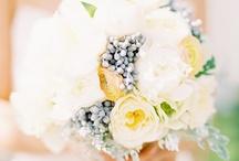Wedding Photos / by Kathy Schick