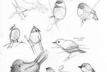 Sketching ideas / by Kirsten Bray