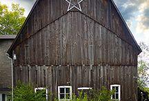 Barns / by Donita Gussie