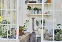 Dream of a garden Shed / by Kim Steeves