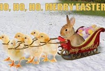 Easter/Spring / by ArtsyFartsy AnimalLuvr