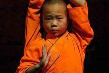 Shaolin Kung Fu / by Elisabeth Szomolya