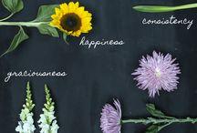 Flower Meanings / by Owens Flower Shop