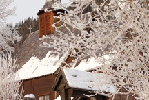 Winter / by Mary Ysebert