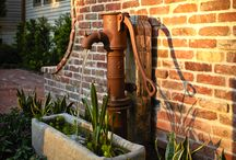 Garden water / by Rowena Noring