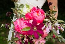 Floral shoot / by Megan Noonan Photography