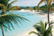 beaches / by Carol Wilbur