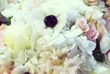 FD 4 customer weddings / by Emma Meek