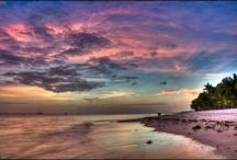 Hawaii / by Jason Arnold