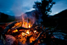 Camping / by Ashleigh Thornton