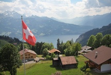 All Things Swiss / by Anna Rose Bain