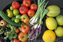 Garden / Self-sufficiency is a fantastic goal! / by Jessica Morgan