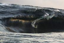 Surf / Bodyboard  / by Ralph E.