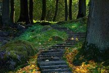 Nature / by Teresa Woods