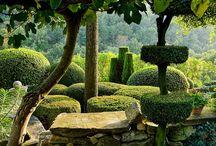 Nicole de Vesian's Iconic garden etc / by Debby Tenquist