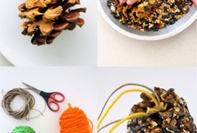 Bird feeders / Fine dining solutions for your local feathered friends - family-friendly crafts, all made from recycled materials. / by Leslie Science & Nature Center