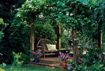 Garden Fantasy & Design / Elements of a Beautiful Garden.  / by Pamela