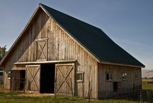 Farming / by Amy Wells Fluharty