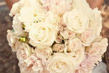 Strouse/Anerino Wedding / by Kristine Strouse