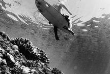 ocean photography / by Jordynn Elizabeth