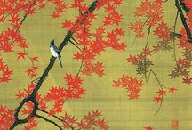 Land of the Rising Sun 2014 / learn about Japan  / by Kathy Hudson