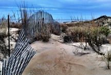 Beachness... / by Robin Moran Bernal