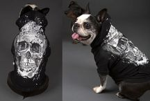 BRF Doggystyle Couture / by Brent Ray Fraser