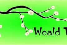 Weald-taichi.co.uk / by Brian Mundy