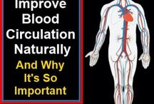 Blood Health / by G T