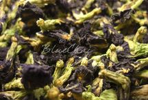 BlueChai Tea Inspiration / by BlueChai - Dried Butterfly Pea Shop