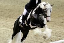 English riding / by Debi Strydom