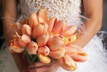 wendy's wedding flowers / by Katie Pound