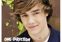 <3 OneDiiirection!  ツ / one direction. loove their music and loook.. and don't forget those accents. ;)  / by Lauren Berndt