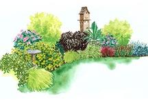Shade Gardening / by Bonnie Hughes