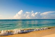 Ocean   Beach / by So Many Little Things
