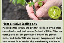 Gardening gift ideas / by Canadian Gardening