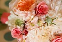 {Coral Florals} / by Audrey