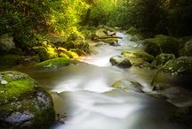 LIGHT AND WATER / by Raul Dado